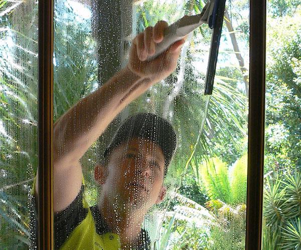 Steam Cleaning the Garage Windows